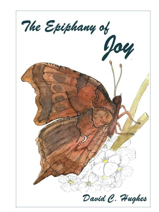 Front Cover Concept for The Epiphany of Joy