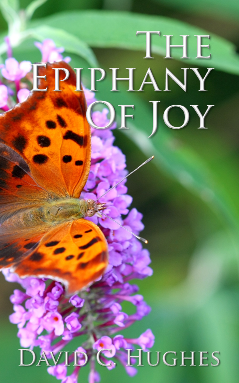 The Epiphany of Joy, The search for joy, Joy