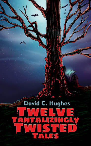 Twelve Tantalizingly Twisted Tales, David C. Hughes