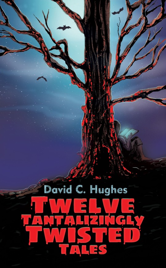Twelve Tantalizingly Twisted Tales by David C. Hughes, Author